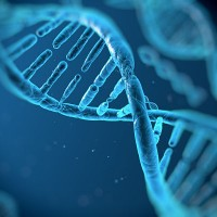 Have YOU got the DNA of a modern recruiter?